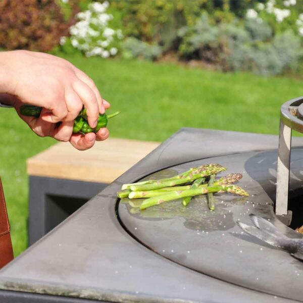 plaque de cuisson des braseros bbq artiss
